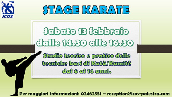 stage-karate-ICOS-2016