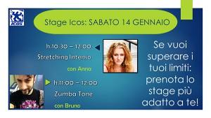 stage-14febbraio2017